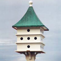purple martin bird houses