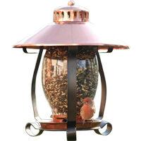 Coppertop Lantern Bird Feeder