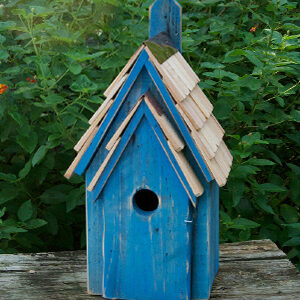 Bird House For Bluebirds