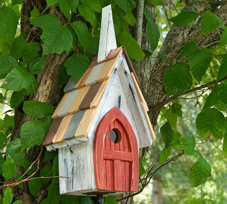 Bird House Ideas and Tips