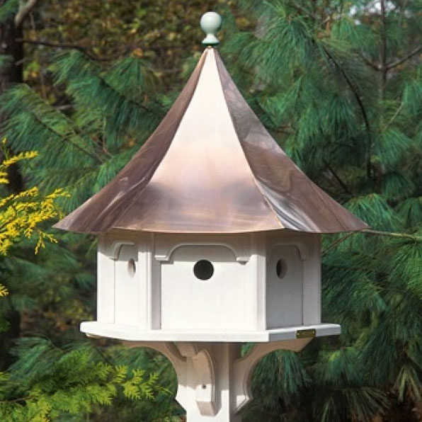 Attracting birds to your feeder yard envy for Types of birdhouses for birds