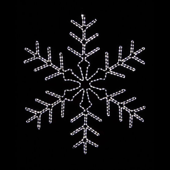 White Snowflake, Cool White Lights