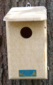 Flycatcher House