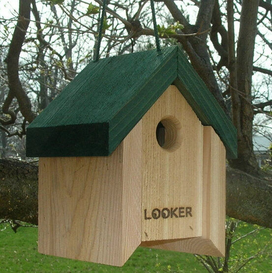 Lifting Roof Wren Bird House