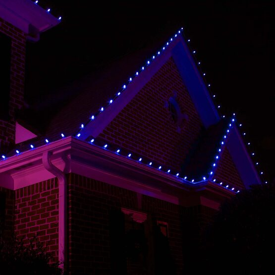 C9 Commercial String Lights, Blue Bulbs