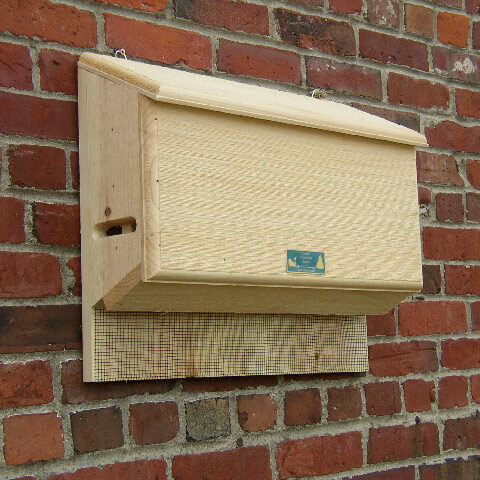 Large Sunshine Bat House