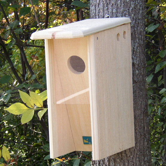 Starling-Resistant Flicker House