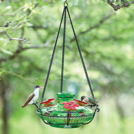 Bloom Perch Hummingbird Feeder