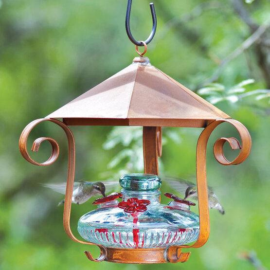Bloom hummingbird feeder with shelter yard envy bloom hummingbird feeder with shelter mozeypictures Gallery