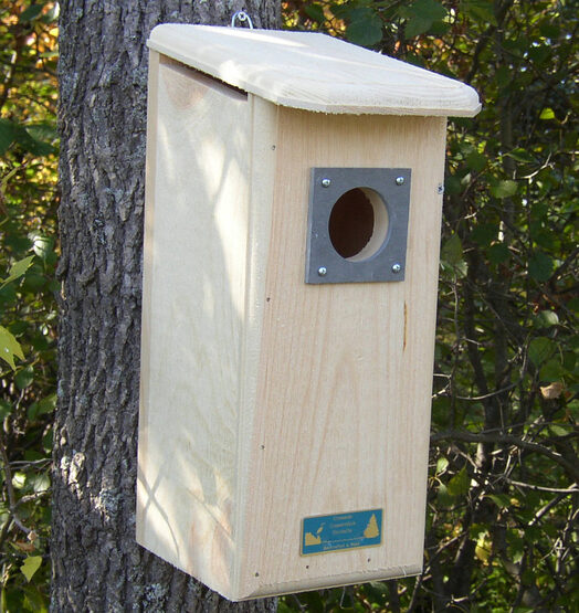 Flicker Wooden Bird House