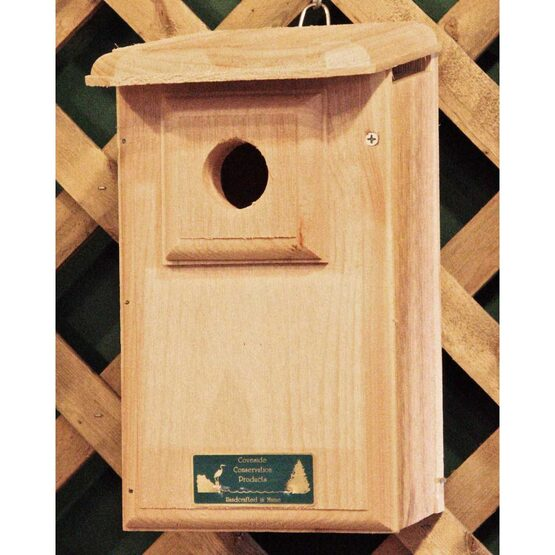 Mountain Bluebird House