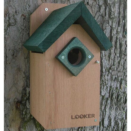 Green Roof Bluebird House