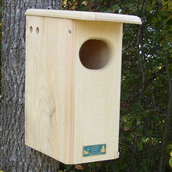 Black Bellied Whistling Wood Duck Bird House