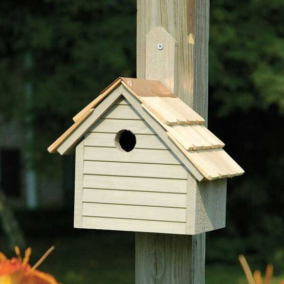 Cape Cod Wren Bird House
