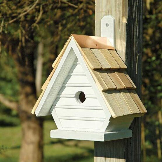 Chick Post-Tree  Bird House