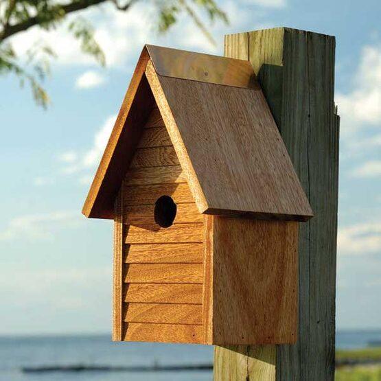 Starter Bird House