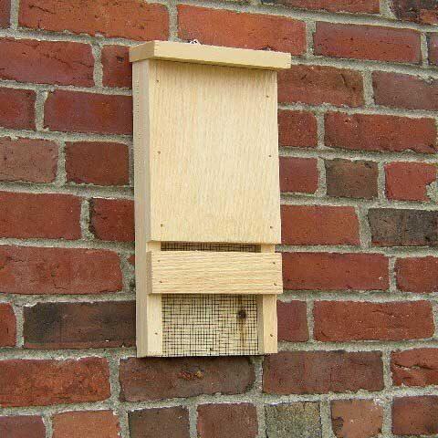 Mini Bat House