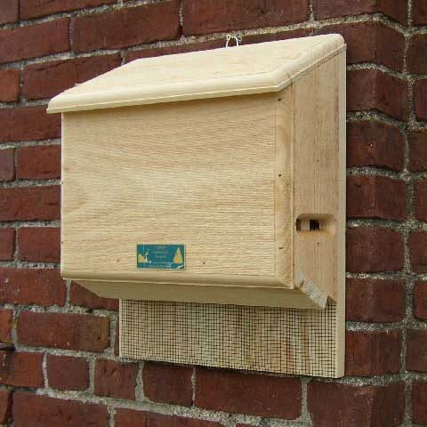 Small Sunshine Bat House