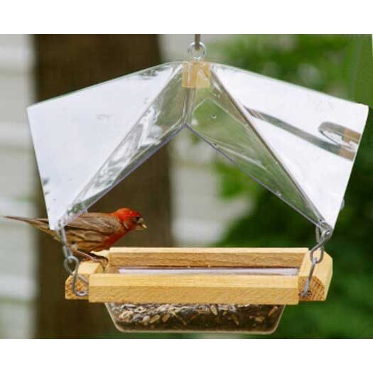 Crystal Clear feeder