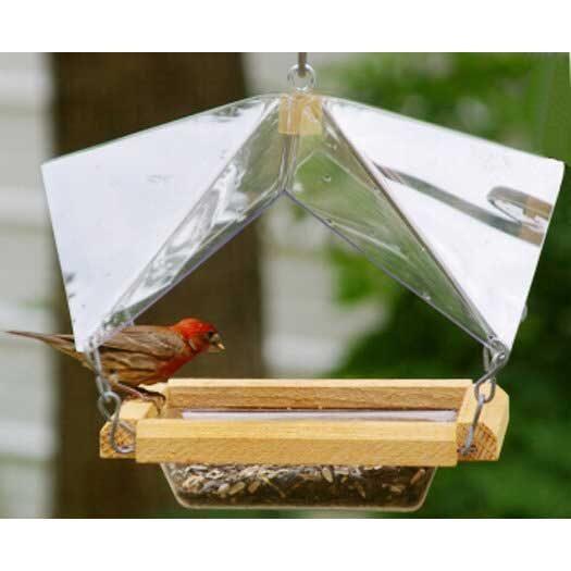 Crystal Clear feeder