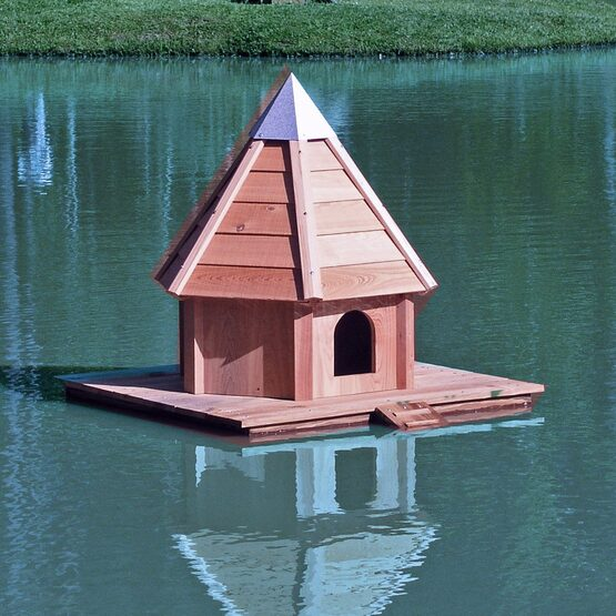 Aqua Duck Floating Bird House