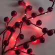 7' LED Fairy Lights, Red, Green Wire