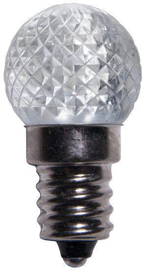 Mini G20 Globe LED Patio Light Bulb, Cool White