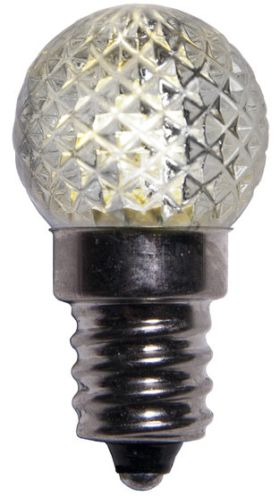 Mini G20 Globe LED Patio Light Bulb, Warm White