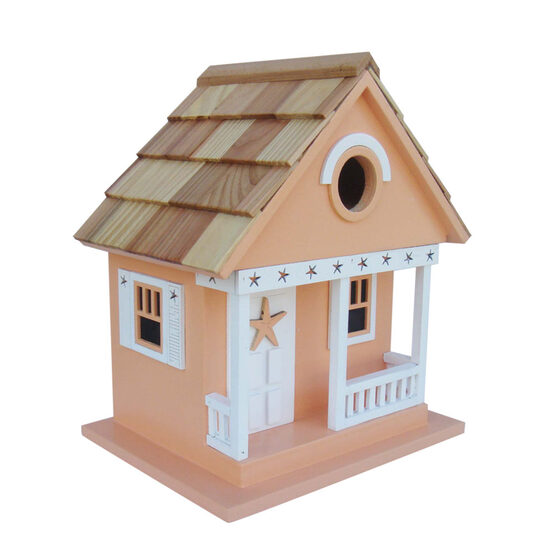 Beach Starfish Cottage 1 Room Hanging Bird House