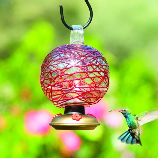 Dew Drop Spun Sugar Glass Hummingbird Feeder