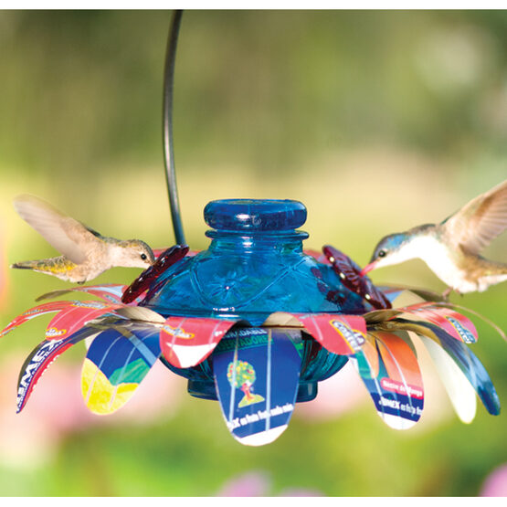 Sugar Shack Pot de Creme Glass Hummingbird Feeder
