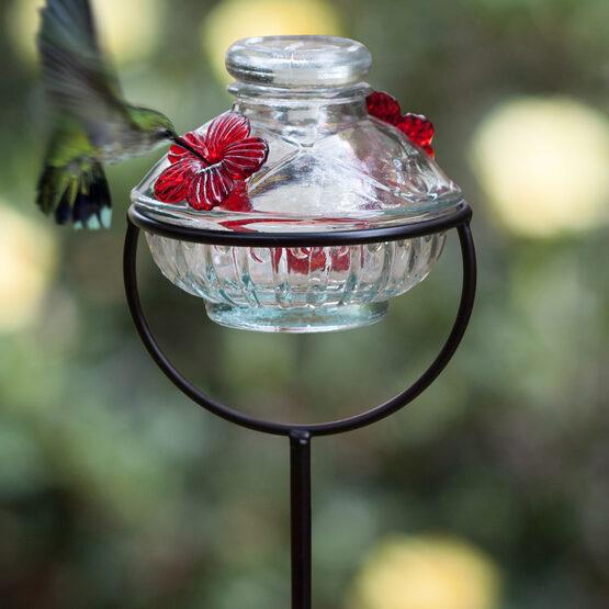 Pot de Creme Glass Stake Hummingbird Feeder