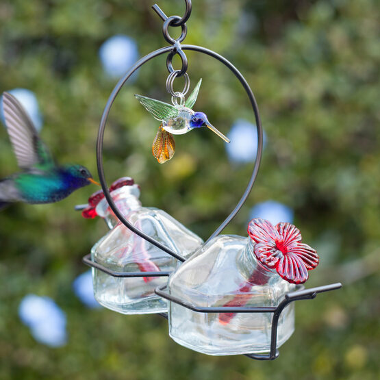 Bouquet 2 Deluxe Glass Hummingbird Feeder