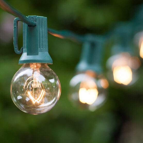 25' Globe String Lights, 25 Clear G30 Bulbs