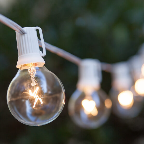 G50 Clear Globe String Lights : Globe String Lights, Clear G50 Bulbs, White Wire - Yard Envy