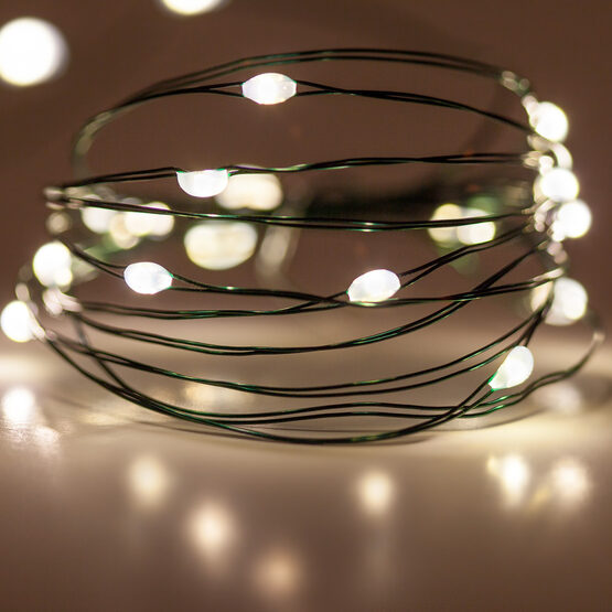 7' LED Fairy Lights, Warm White, Green Wire