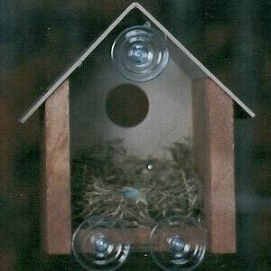Cedar Window Bird House