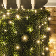 4' x 6' 5mm LED Net Lights, Warm White Twinkle, Green Wire