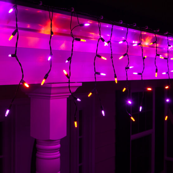 70 M5 Halloween LED Icicle Lights, Purple/Amber, Black Wire