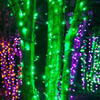 Wide Angle Halloween LED Mini Lights, Green, Black Wire