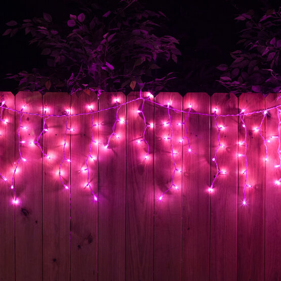 100 Icicle Lights, Purple, White Wire