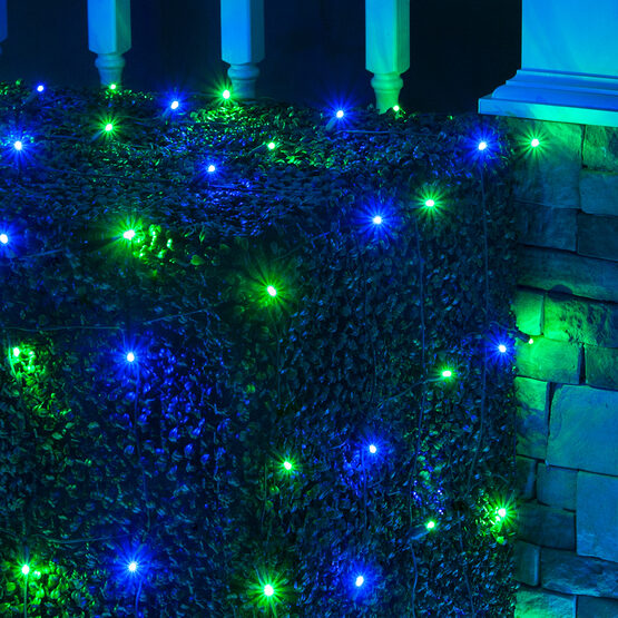 4' x 6' 5mm LED Net Lights, Blue, Green, Green Wire