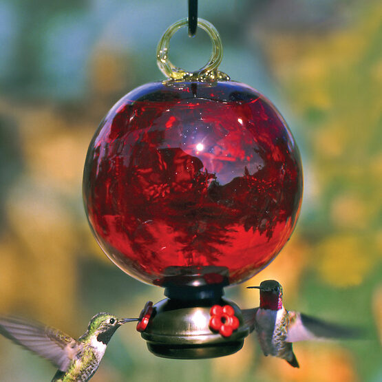 Red Dew Drop Glass Hummingbird Feeder