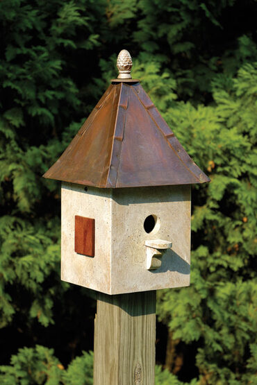 Old World Songbird Suite Bird House
