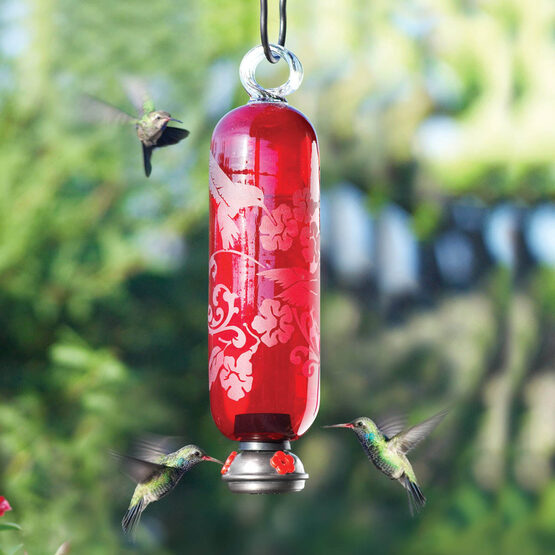 Flame Red Filigree Glass Hummingbird Feeder