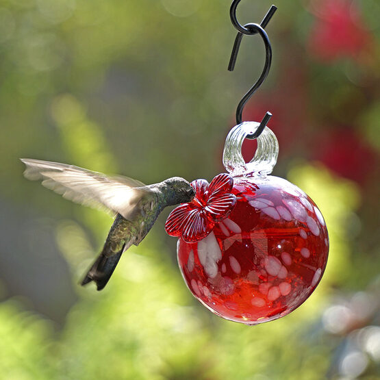Red Pearl Drop Hummingbird Feeder