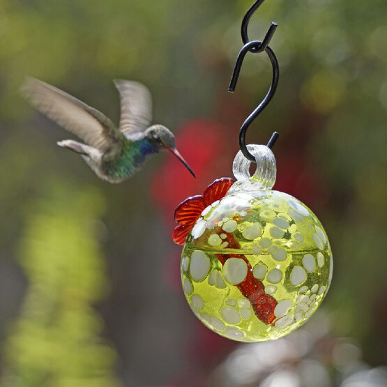Green Pearl Drop Hummingbird Feeder