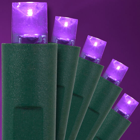 Purple Halloween String Lights, 50 ct, LED Mini