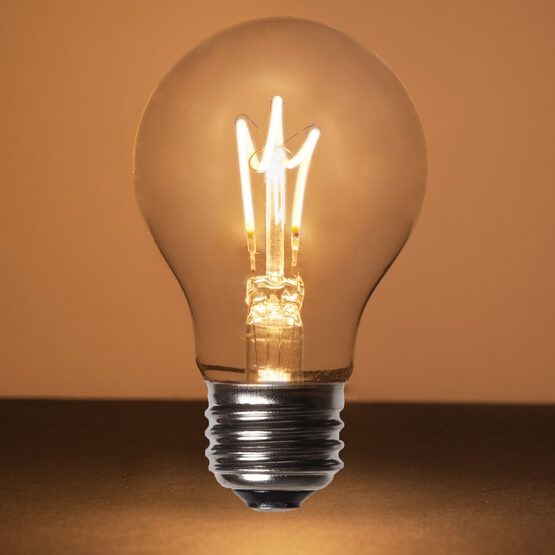 A19 FlexFilament TM LED Edison Light Bulb, Warm White Transparent Glass