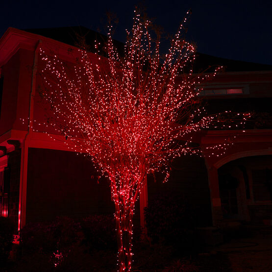 red led christmas lights 50 ct 5mm mini